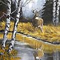 Buck Reflection by Johanna Lerwick