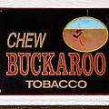 Buckaroo  by David Lee Thompson