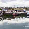 Buckie Harbour by Diane Macdonald