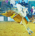 Bucking Bronc by Alice Gipson