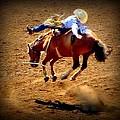 Bucking Broncos Rodeo Time by Susan Garren