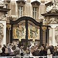 Buckingham Palace Gates by Jon Berghoff