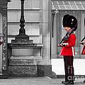 Buckingham Palace Guards by Matt Malloy