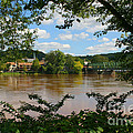 Bucks County Pennsylvania by Living Color Photography Lorraine Lynch