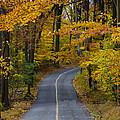 Bucks County Road In Autumn by Bill Cannon