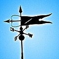 Bucksport Weathervane by Tara Potts