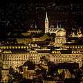 Budapest Castle by Jean-Laurent Tari