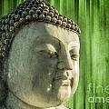 Buddha - Bamboo by Hannes Cmarits