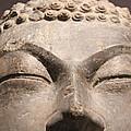 Buddha 6 by Lynn Sprowl