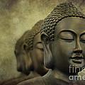 Buddha Bronze by Clare Bambers