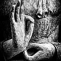 Buddha Hand Mudra by Tim Gainey