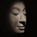 Buddha Head From The Early Ayutthaya Period by Siamese School