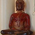 Buddha In Savannah by Sherry Dooley