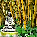 Buddha In The Bamboo Forest by Mary Deal