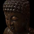 Buddha In The Dark by Daniel Hagerman