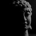 Buddha  by Jessica Shelton