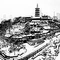 Buddha - Jiming Temple In The Snow - Black-and-white Version  by Dean Harte