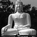 Buddha by Lovejoy Creations