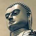 Buddha On Top Of Golden Temple Of Dambulla by Inez Wijker