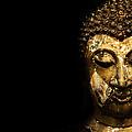 Buddha Portrait  by Thanes Wattanasopa