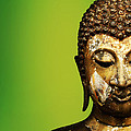Buddha Portrait  by Thanes