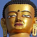 Buddha Statue At The Buddha Park In Kathmandu Nepal by Robert Preston