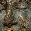 Buddha Thailand 1 by Bob Christopher