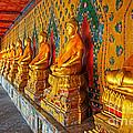 Buddhas At Wat Arun, Bangkok by David Davis