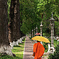 Buddhist Monk 01 by Rick Piper Photography