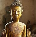 Buddhist Statues G - Photograph By Jo Ann Tomaselli  by Jo Ann Tomaselli