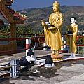 Buddhist Statues by Sally Weigand