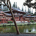 Buddhist Temple, Byodo-in Temple by Panoramic Images