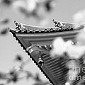 Buddhist Temple In Black And White - Roof Tile Details by Beverly Claire Kaiya