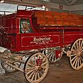 Budweiser Anheuser Busch Wagon by Barb Dalton