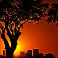 Buenos Aires At Sunset by Jess Kraft