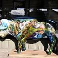 Buffalo Art by Image Takers Photography LLC