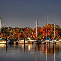 Buffalo Bay Marina 1 by Thomas Young