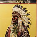 Buffalo Bills Wild West by Bill Cannon