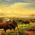 Buffalo Fox Great Plains Western Landscape Oil Painting - Bison - Americana - Historic - Walt Curlee by Walt Curlee