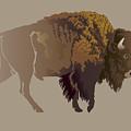 Buffalo. Hand-drawn Illustration by Imagewriter