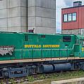 Buffalo Southern 2010 by Guy Whiteley