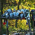 Buffalo Spiritual Grounds by Gary Richards