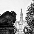 Buffalo Statue On The Parkway by Bill Cannon