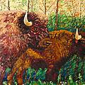 Buffaloes by Francesca Kee