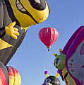 Bug Balloons Waiting To Fly by Brian King