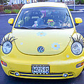 Bug-eyes by Guy Whiteley