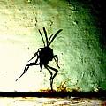 Bug by JoNeL Art