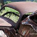 Bug11 by John Turner