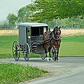 Buggy Ride by Dyle   Warren