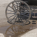 Buggy Wheels by Ann Horn
